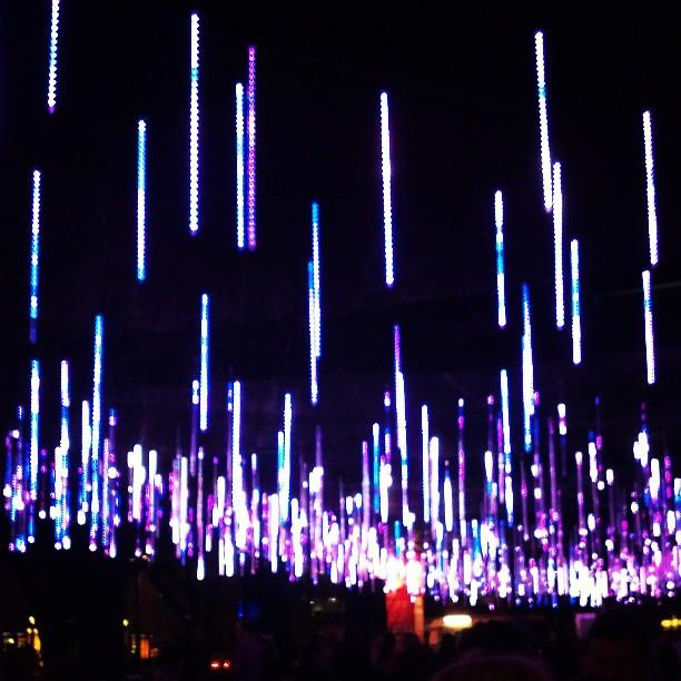 lights at Brisbane Festival