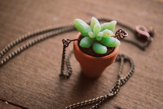 wearable succulent clay planter - succulent pot necklace