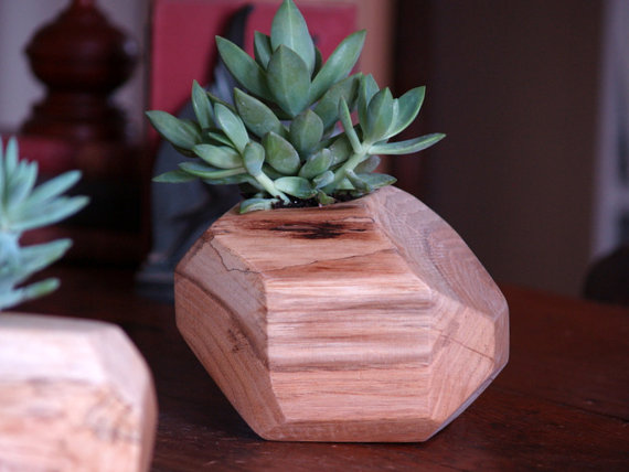 wooden geometric succulent planter