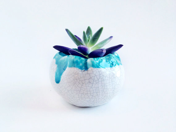 white and blue pottery succulent planter