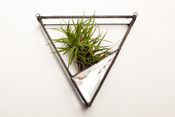 triangle and stained glass terrarium wall
