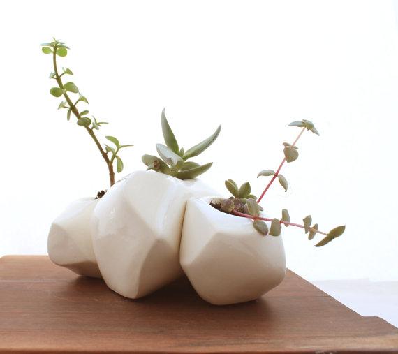 Succulent Planters {#WhatImLoving}